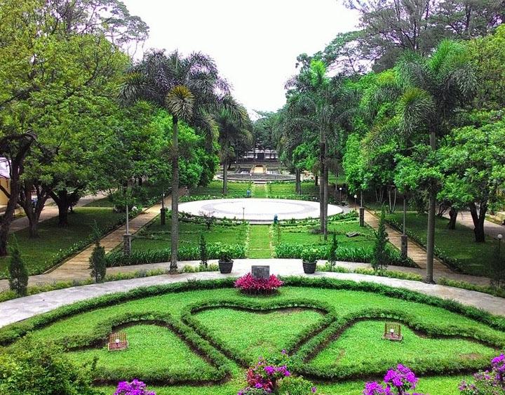The Bogor botanical garden