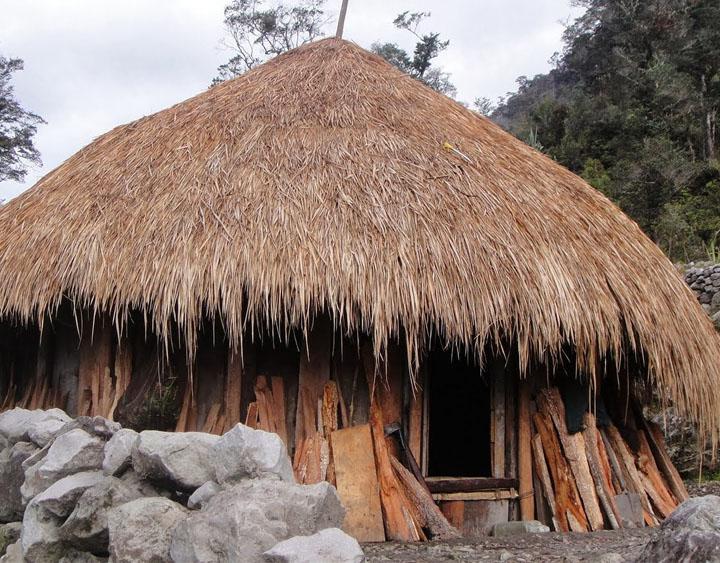 Dani villages