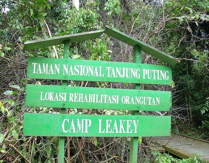 Camp Leaky