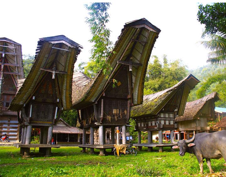 A Traditional Toraja House