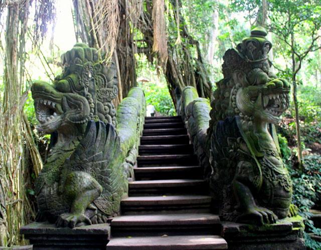 monkeyforestubudtour