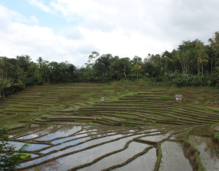 Wongaya Gede Village