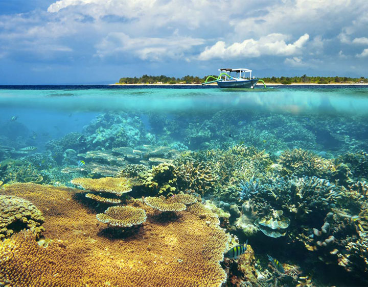 6 Days Lombok - Komodo - Flores - Timor and Sumba Discovery