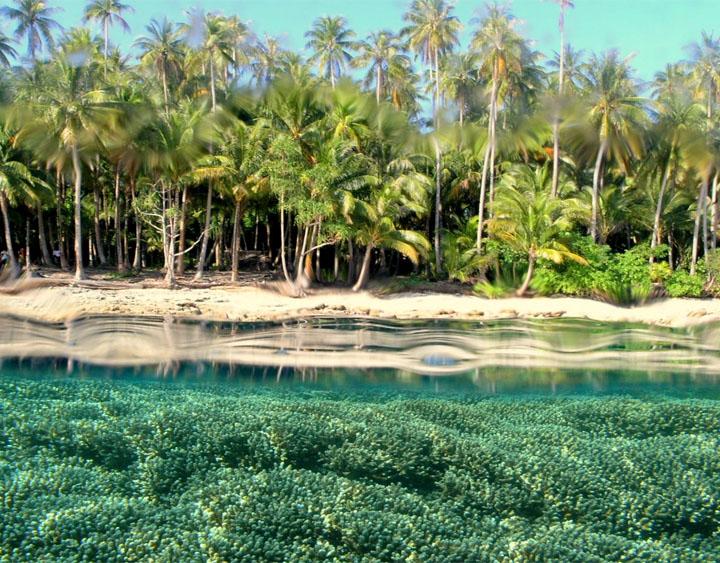 5 Days Papua - The Baliem Valley Adventure