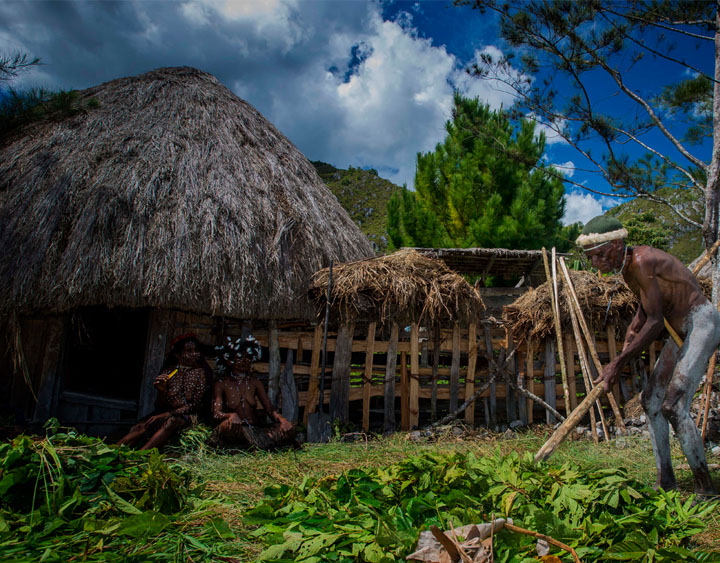 8 Days Papua - The Baliem Valley & Asmat Exploration