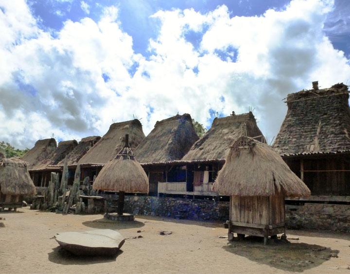 10 Days Komodo - Flores - Timor Land, Sea and Air Travel