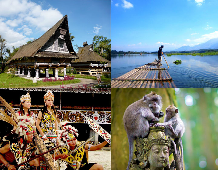 14 Days Indonesia Wildlife, Culture, and Highland Discovery