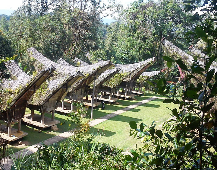 4 Days Toraja The Hanging Grave Adventure